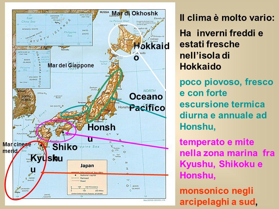 Ha inverni freddi e estati fresche nell'isola di Hokkaido