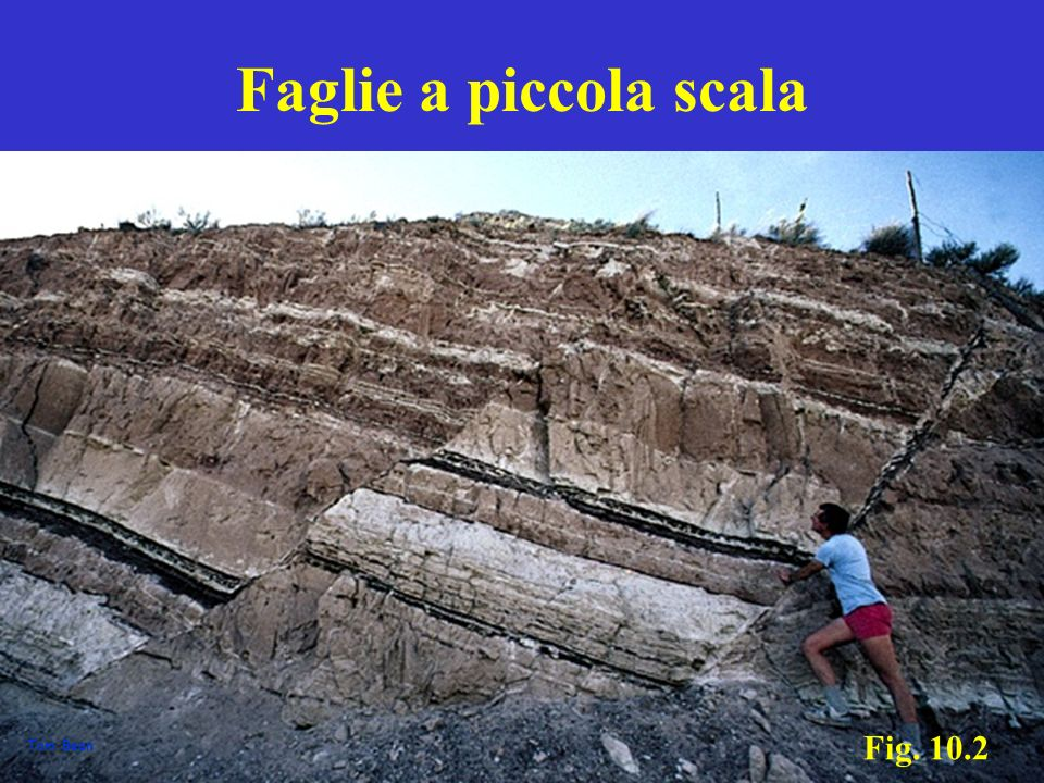 Faglie a piccola scala Fig. 10.2 Tom Bean