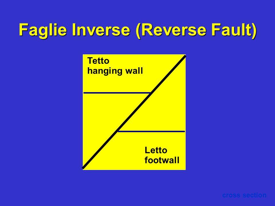 Faglie Inverse (Reverse Fault)