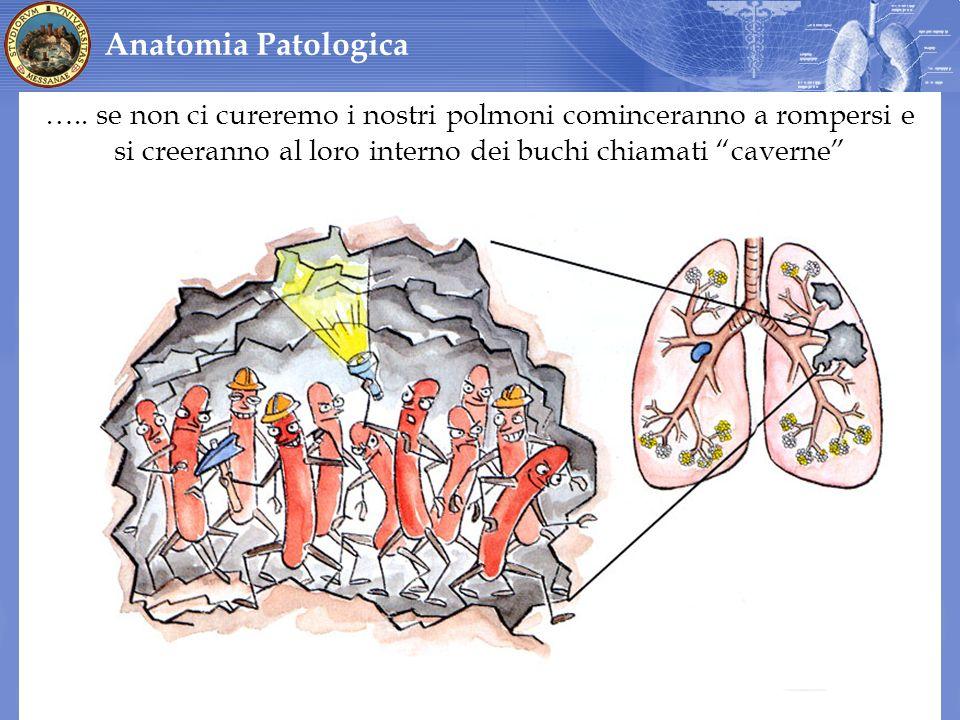 Anatomia Patologica …..