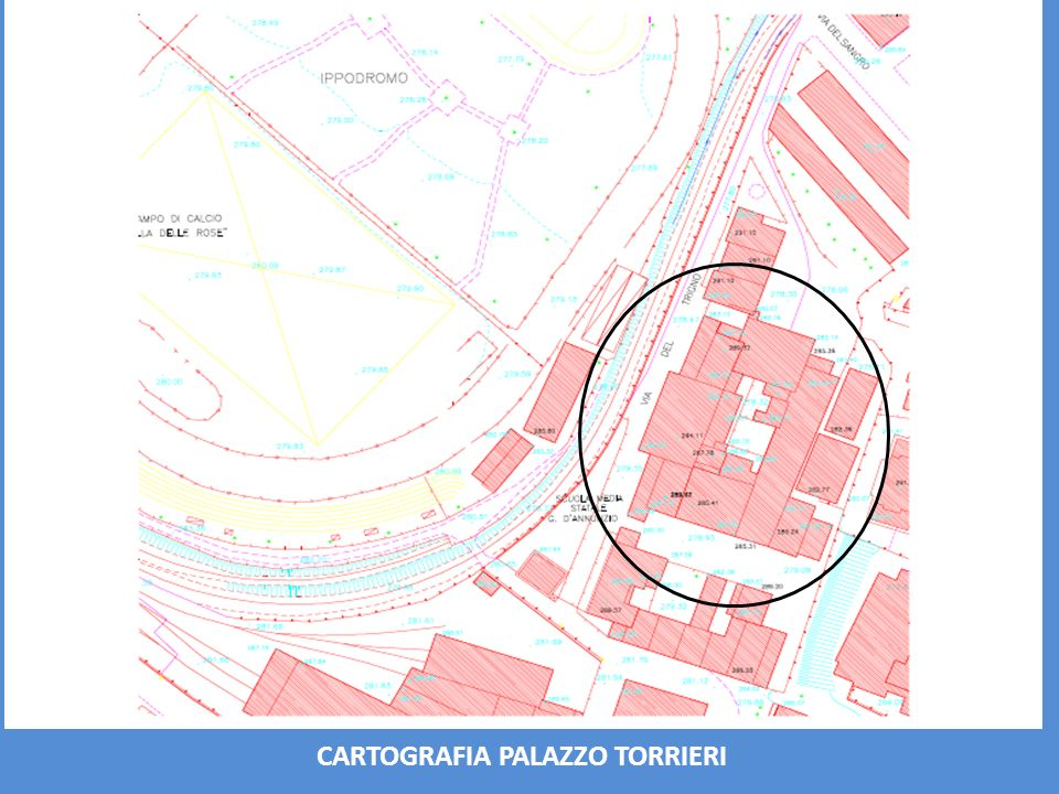CARTOGRAFIA PALAZZO TORRIERI