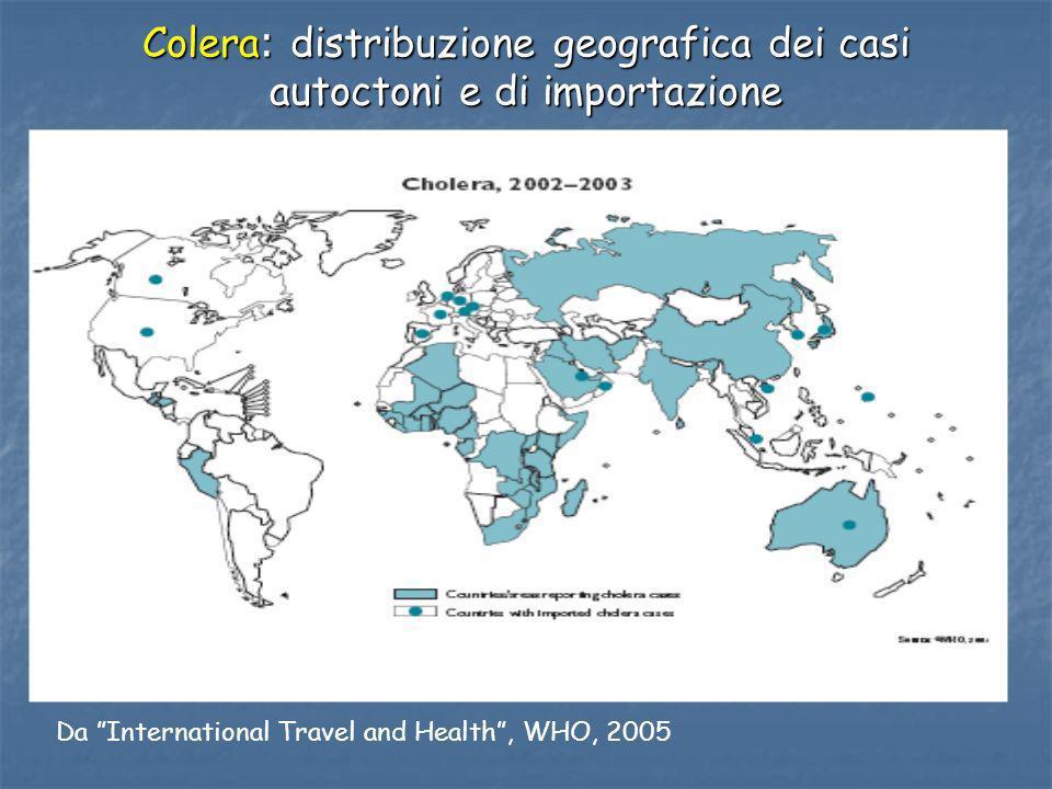 Colera: distribuzione geografica dei casi autoctoni e di importazione