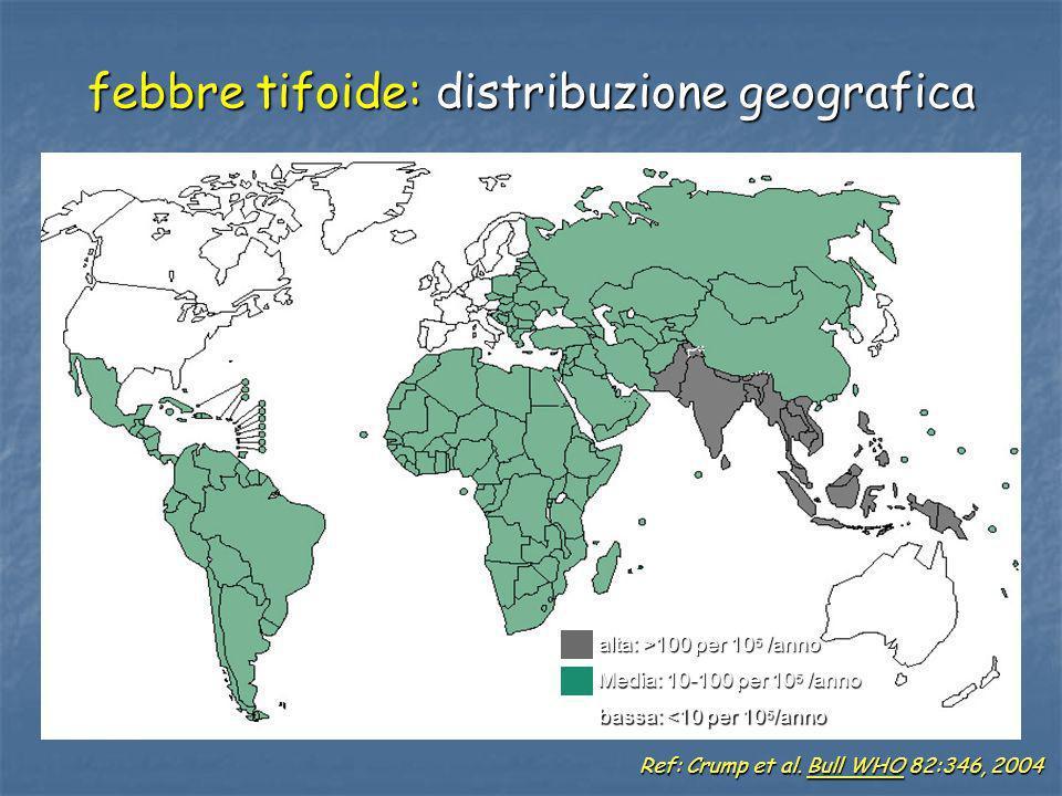 febbre tifoide: distribuzione geografica
