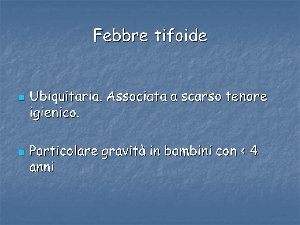 Febbre tifoide Ubiquitaria. Associata a scarso tenore igienico.