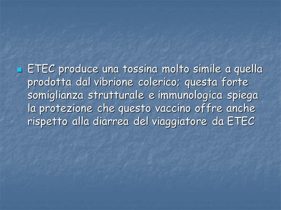 ETEC produce una tossina molto simile a quella prodotta dal vibrione colerico; questa forte somiglianza strutturale e immunologica spiega la protezione che questo vaccino offre anche rispetto alla diarrea del viaggiatore da ETEC