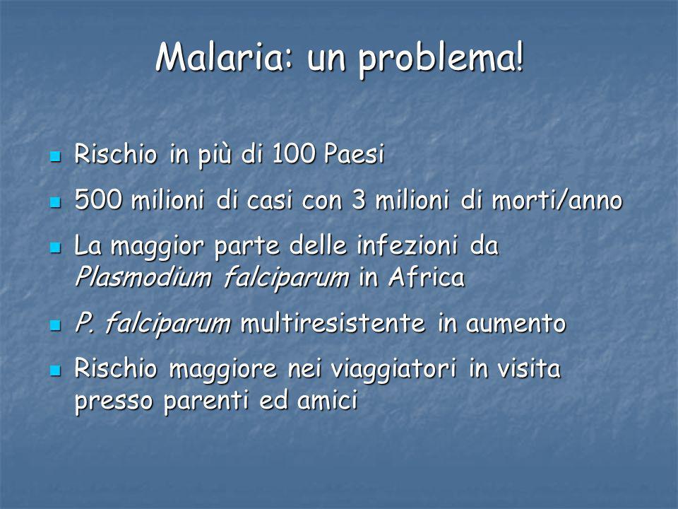 Malaria: un problema! Rischio in più di 100 Paesi