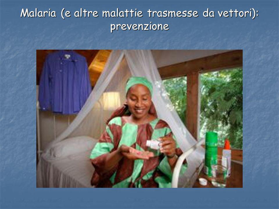Malaria (e altre malattie trasmesse da vettori): prevenzione