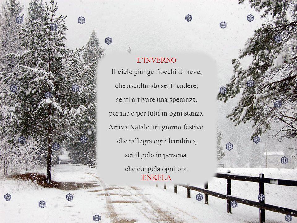 Il cielo piange fiocchi di neve, che ascoltando senti cadere,
