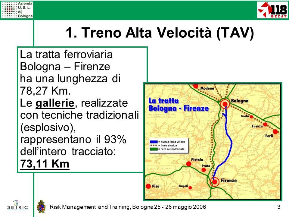 1. Treno Alta Velocità (TAV)