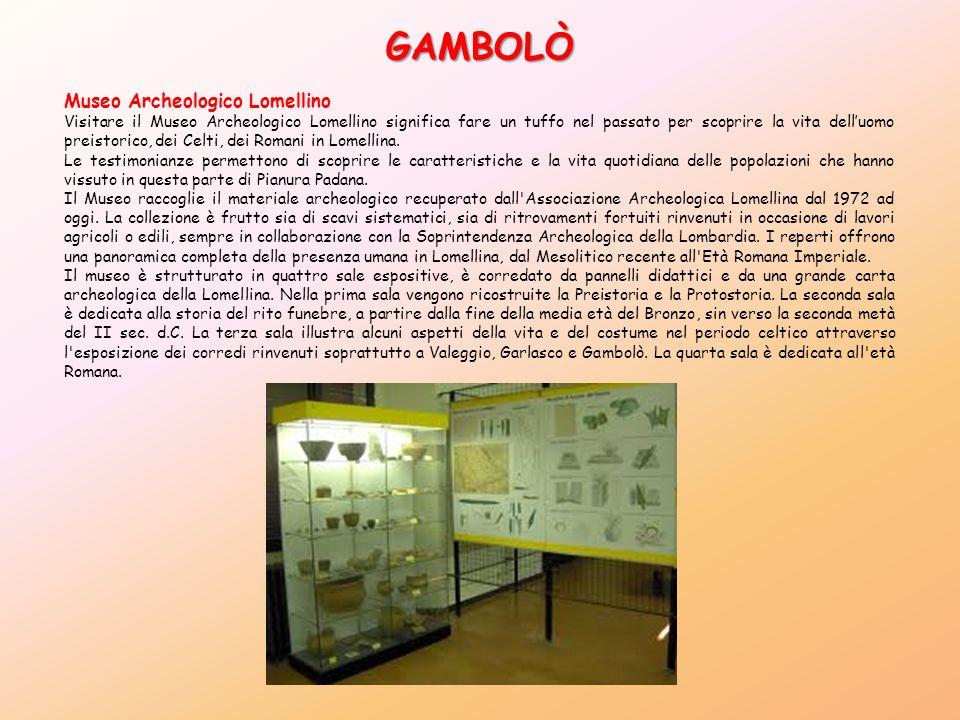 GAMBOLÒ Museo Archeologico Lomellino