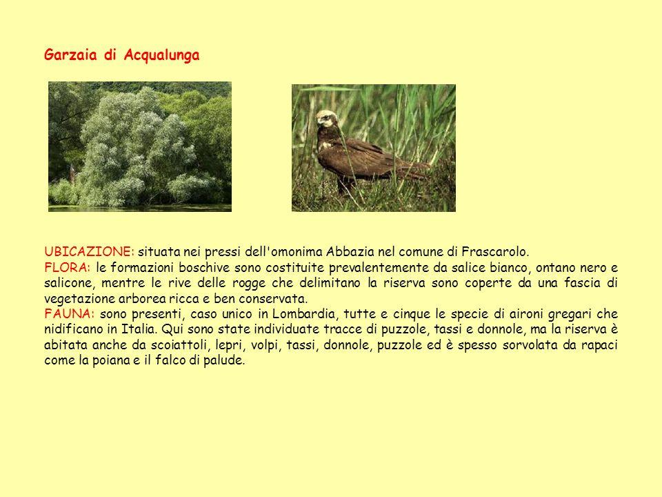 Garzaia di Acqualunga UBICAZIONE: situata nei pressi dell omonima Abbazia nel comune di Frascarolo.