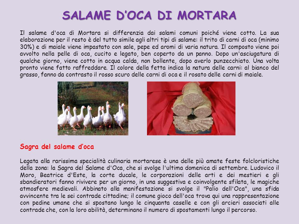 SALAME D'OCA DI MORTARA