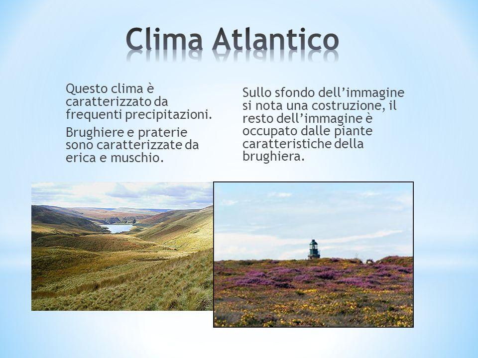 Clima Atlantico Questo clima è caratterizzato da frequenti precipitazioni. Brughiere e praterie sono caratterizzate da erica e muschio.
