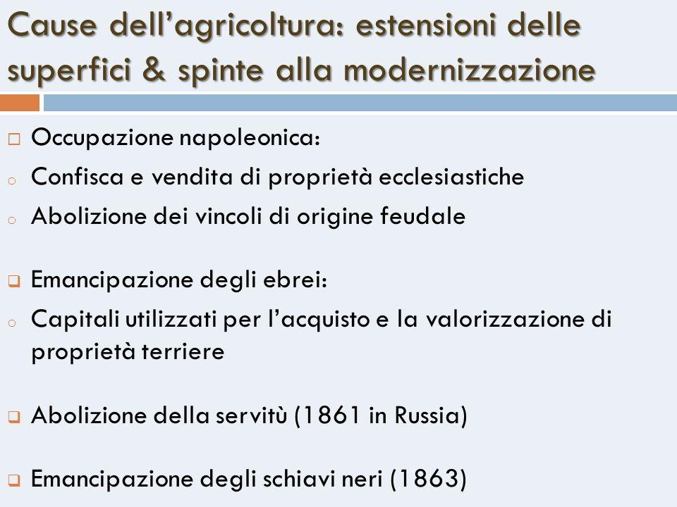 Cause dell'agricoltura: estensioni delle superfici & spinte alla modernizzazione