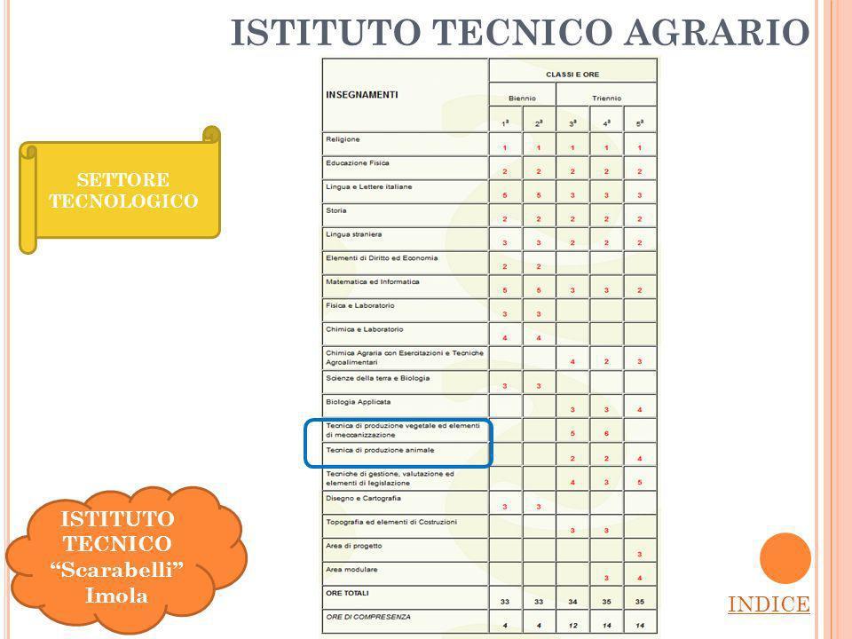 ISTITUTO TECNICO AGRARIO