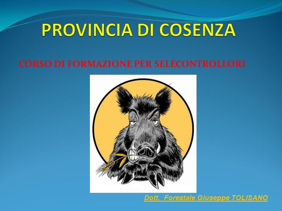 CORSO DI FORMAZIONE PER SELECONTROLLORI