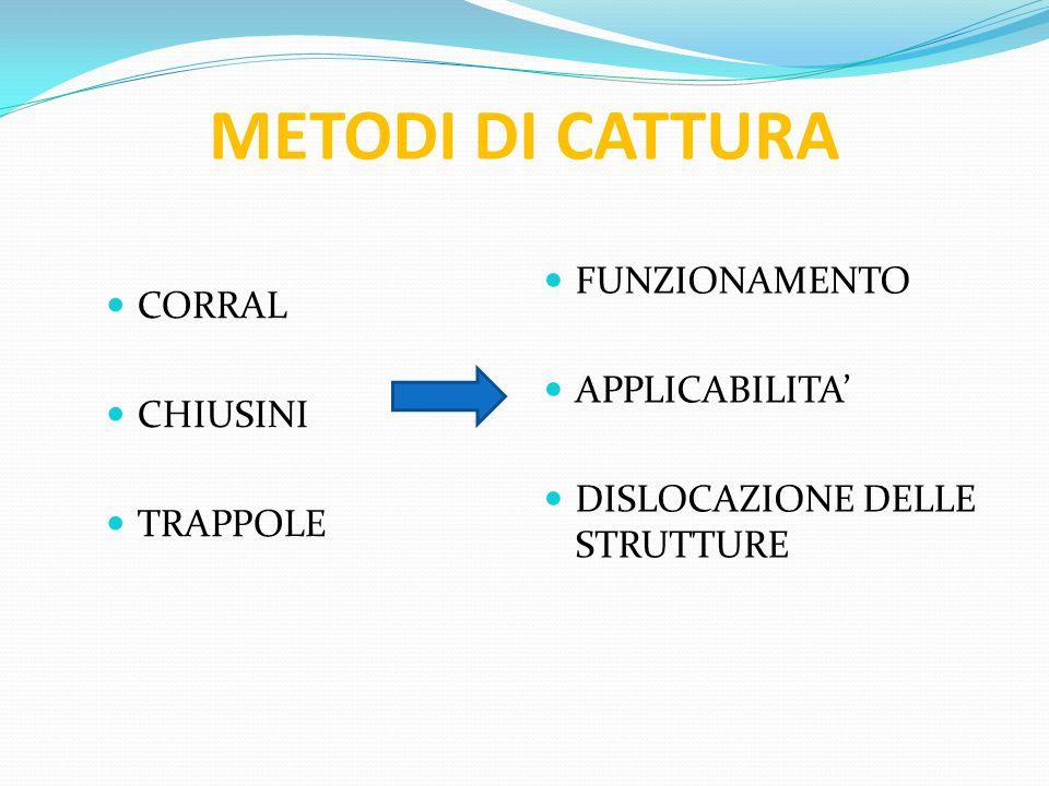 METODI DI CATTURA FUNZIONAMENTO CORRAL APPLICABILITA' CHIUSINI