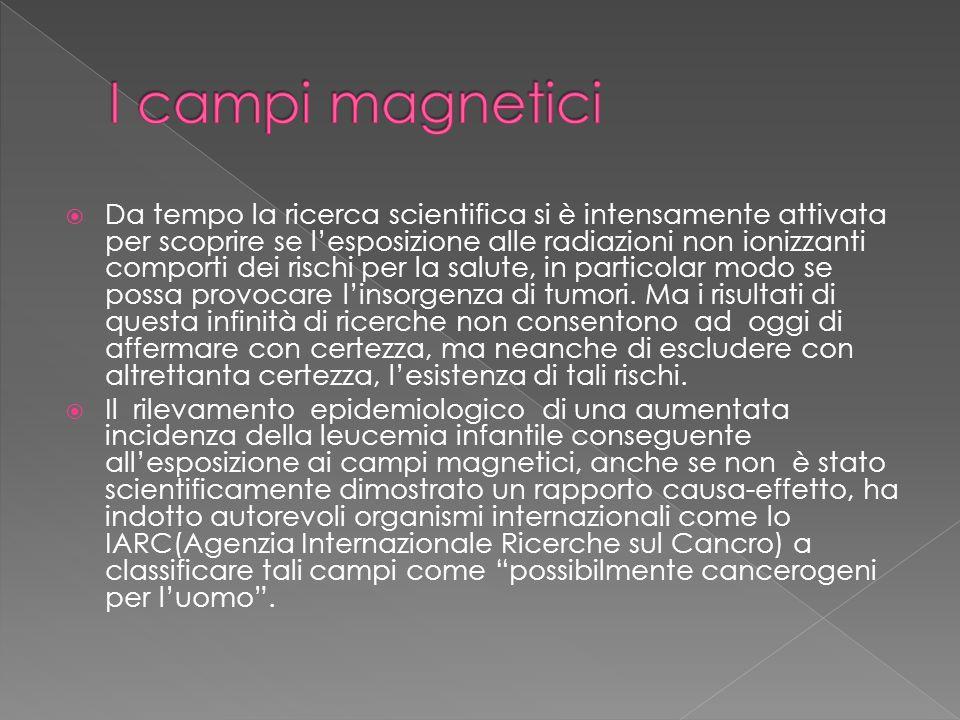 I campi magnetici