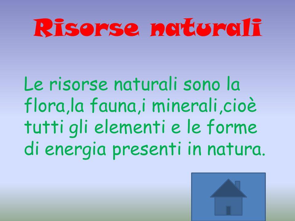 Risorse naturali Le risorse naturali sono la flora,la fauna,i minerali,cioè tutti gli elementi e le forme di energia presenti in natura.