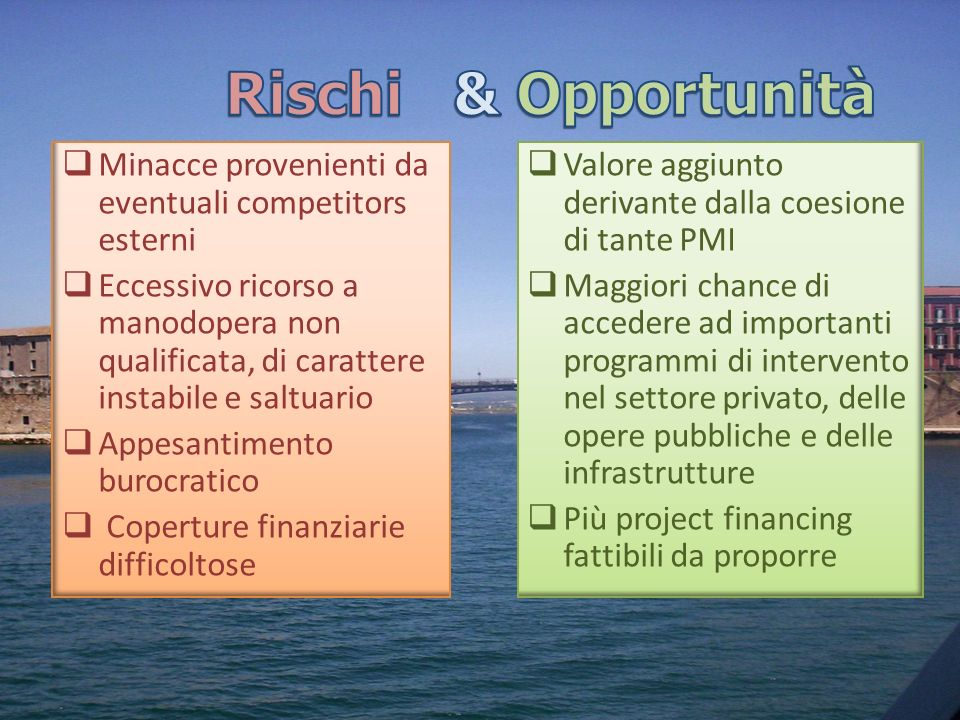 Rischi & Opportunità Minacce provenienti da eventuali competitors esterni.