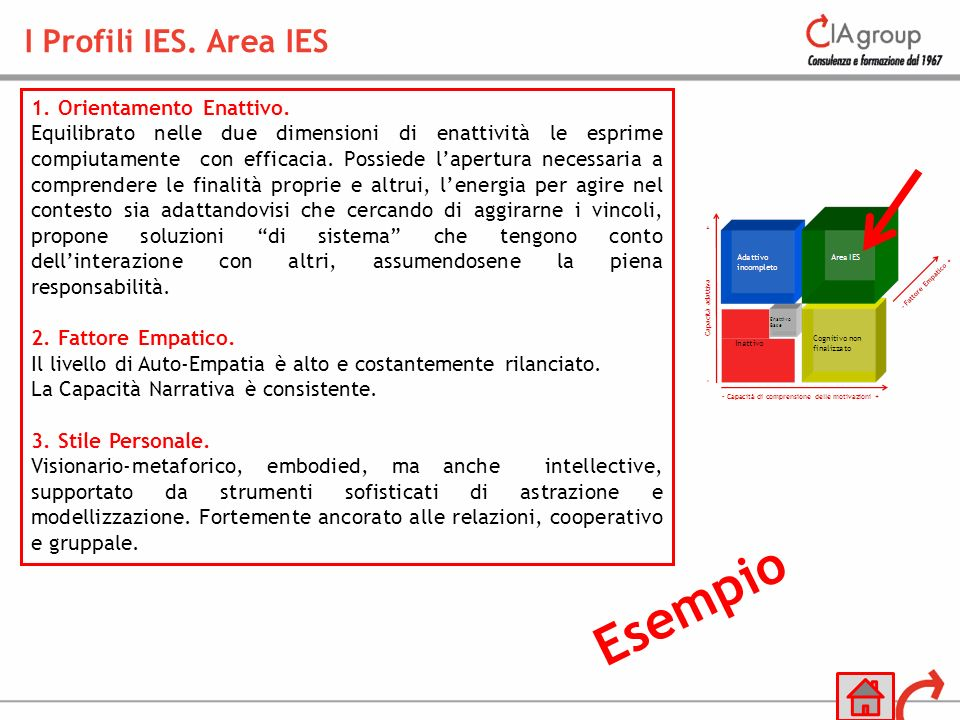 Esempio I Profili IES. Area IES 1. Orientamento Enattivo.