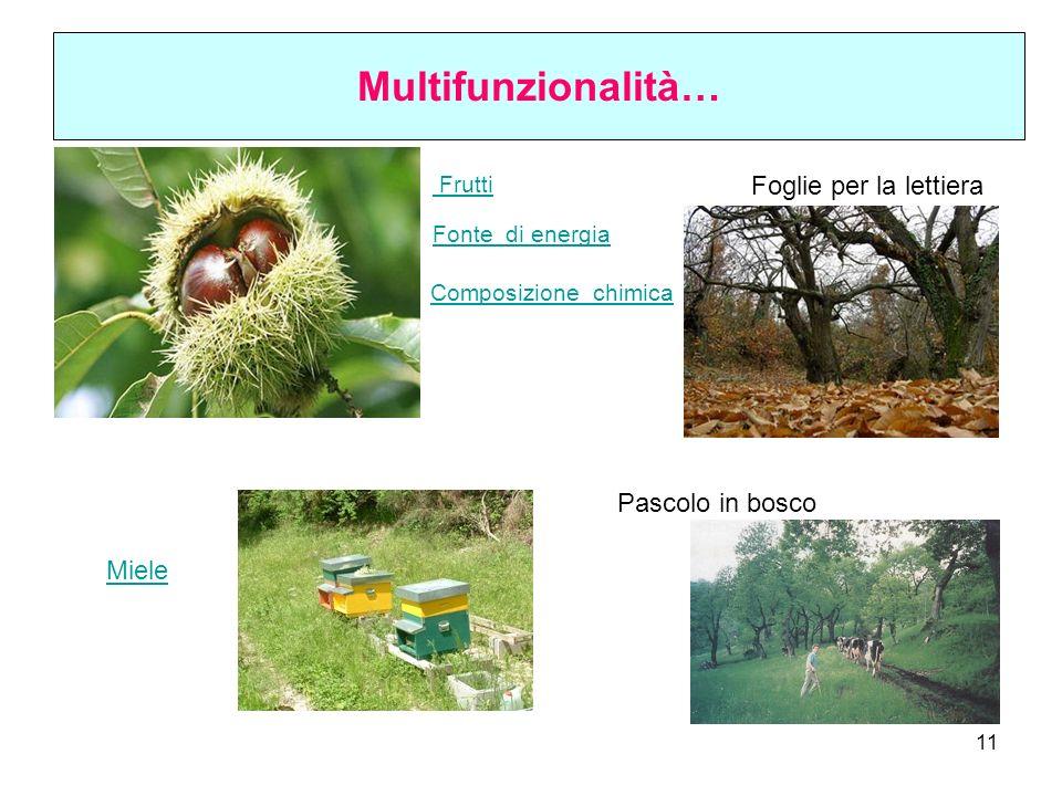 Multifunzionalità… Foglie per la lettiera Pascolo in bosco Miele