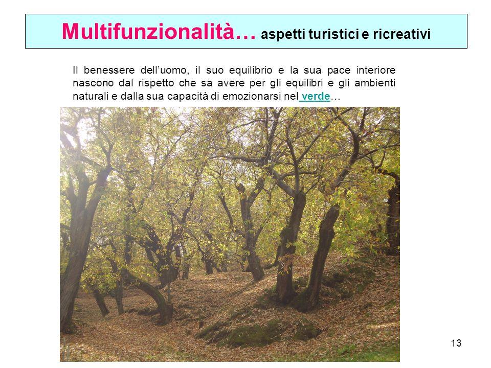 Multifunzionalità… aspetti turistici e ricreativi