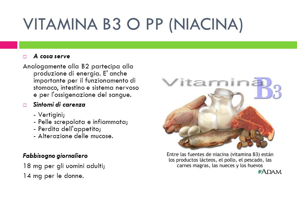 VITAMINA B3 O PP (NIACINA)