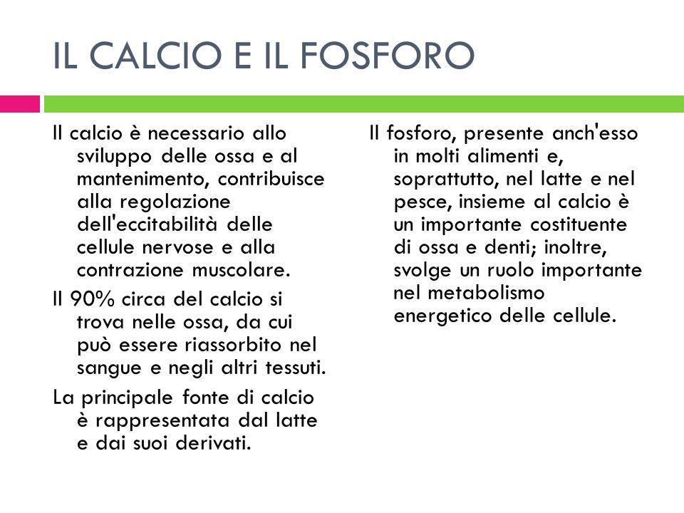 IL CALCIO E IL FOSFORO