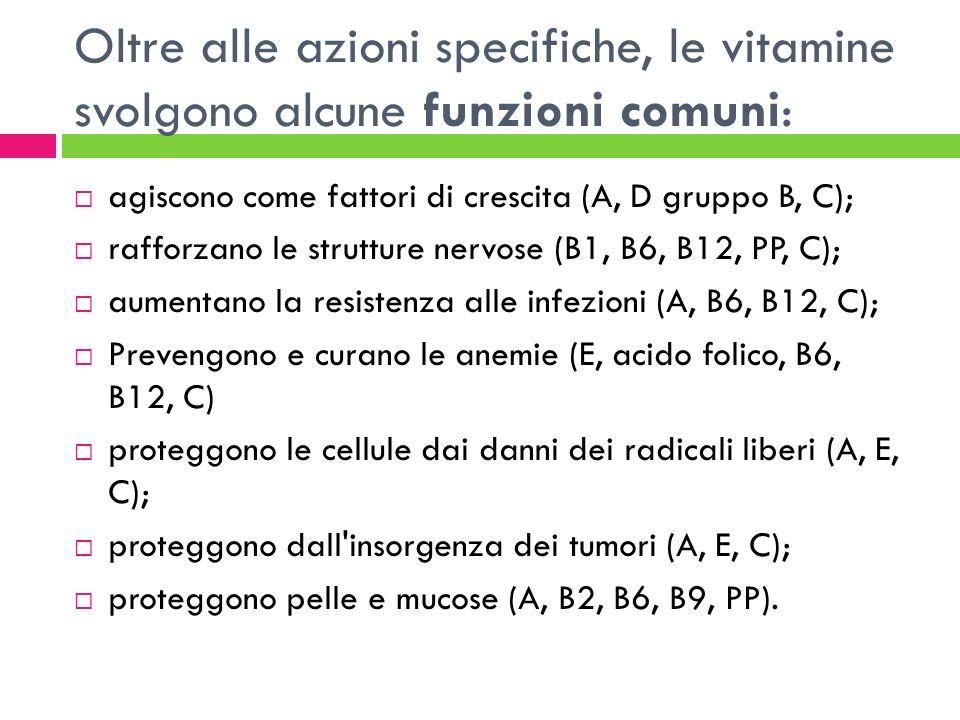 Oltre alle azioni specifiche, le vitamine svolgono alcune funzioni comuni: