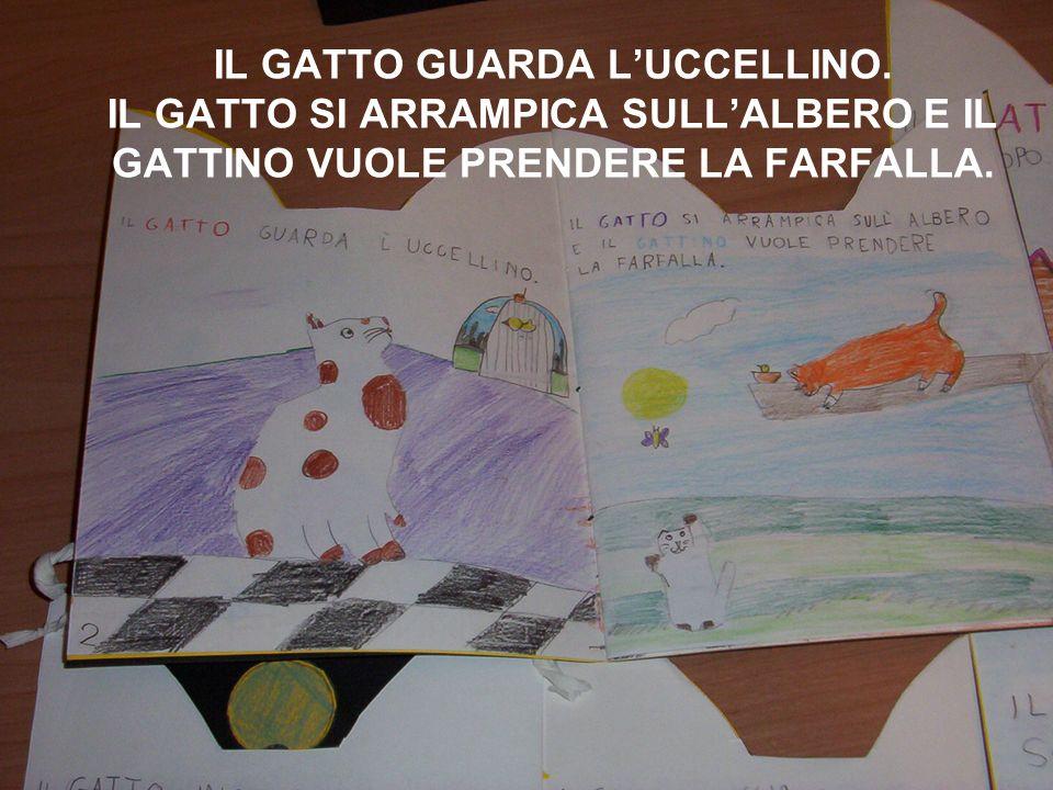 IL GATTO GUARDA L'UCCELLINO