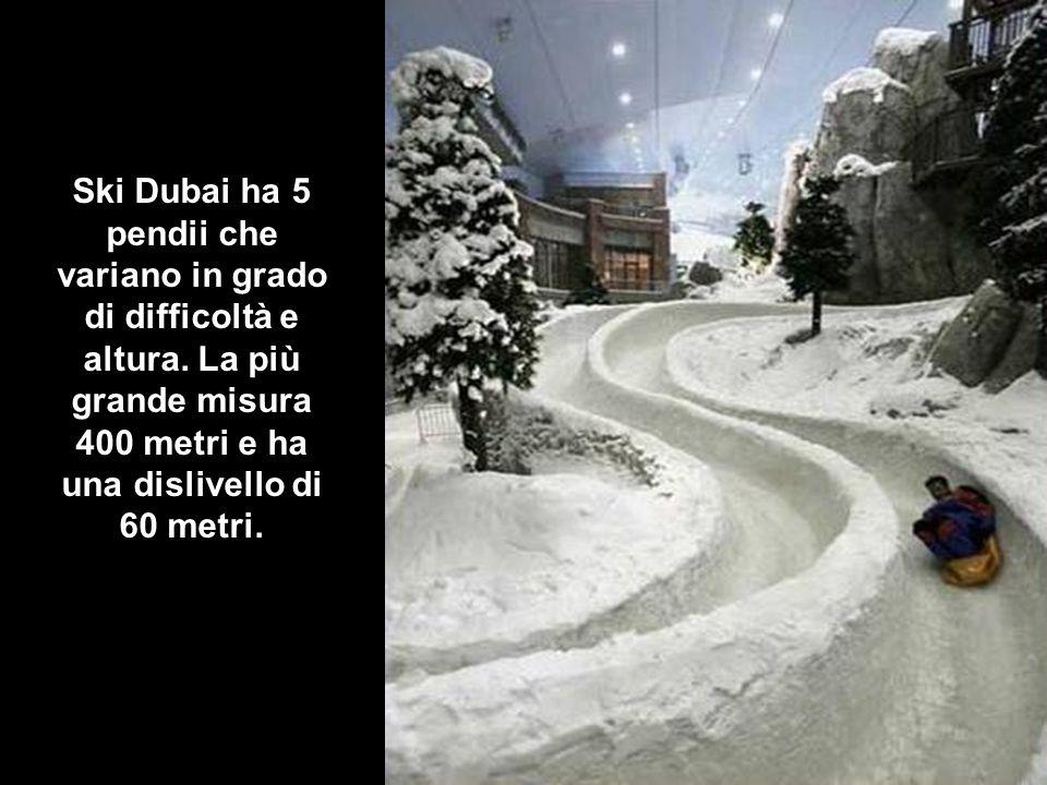 Ski Dubai ha 5 pendii che variano in grado di difficoltà e altura