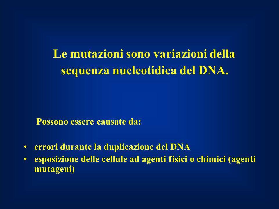 Le mutazioni sono variazioni della sequenza nucleotidica del DNA.
