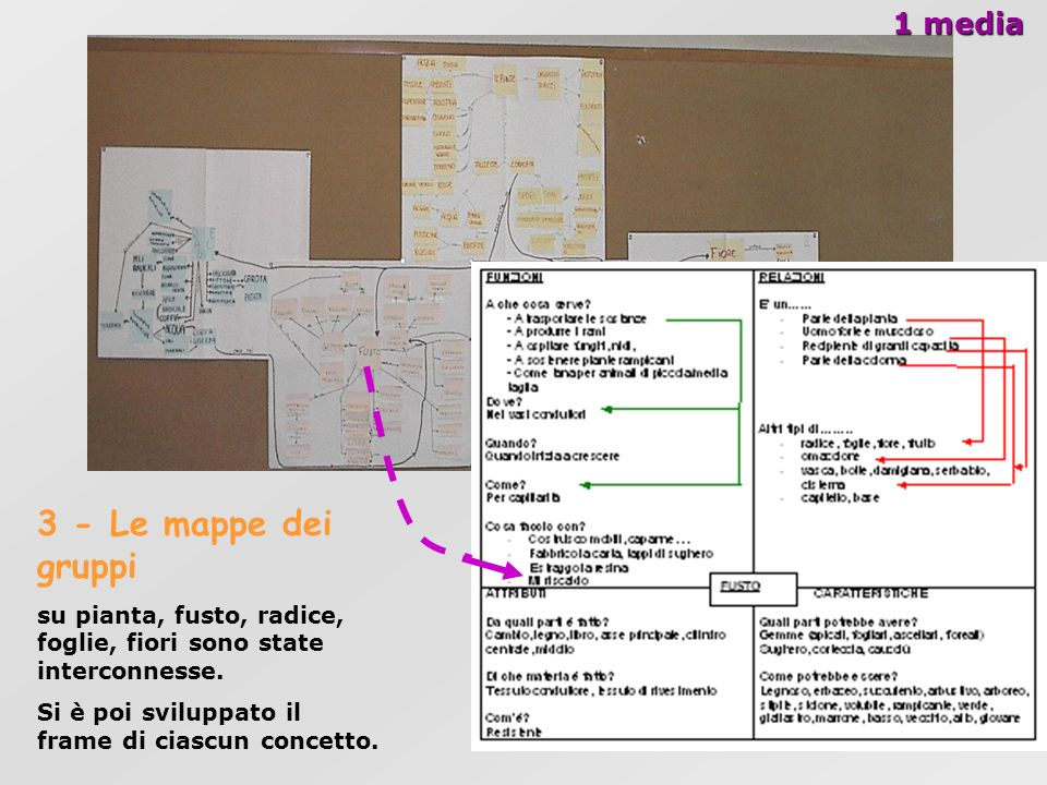 3 - Le mappe dei gruppi 1 media