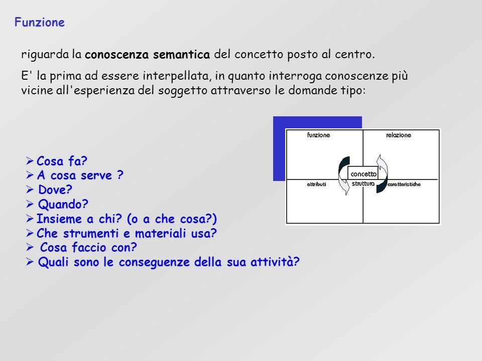 Funzione riguarda la conoscenza semantica del concetto posto al centro.