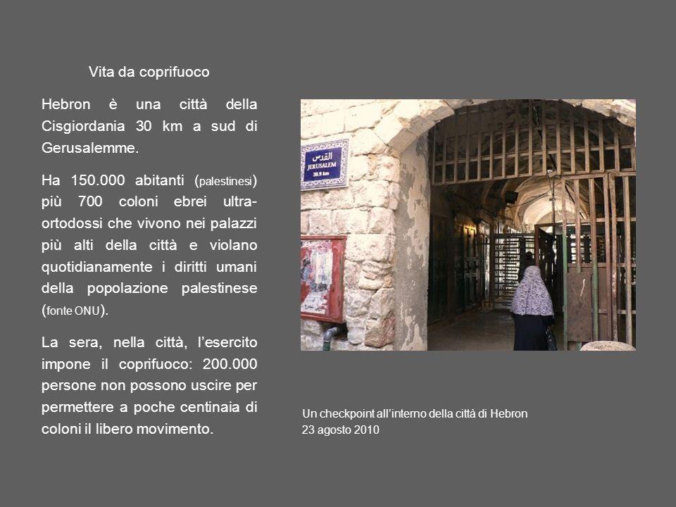 Hebron è una città della Cisgiordania 30 km a sud di Gerusalemme.