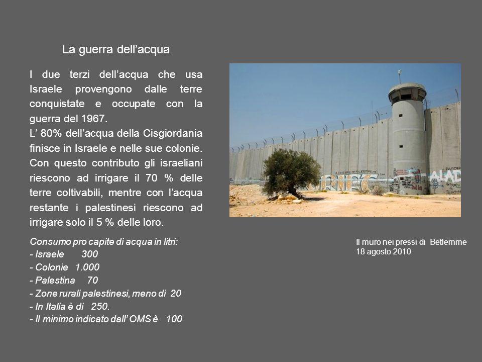 La guerra dell'acqua I due terzi dell'acqua che usa Israele provengono dalle terre conquistate e occupate con la guerra del 1967.