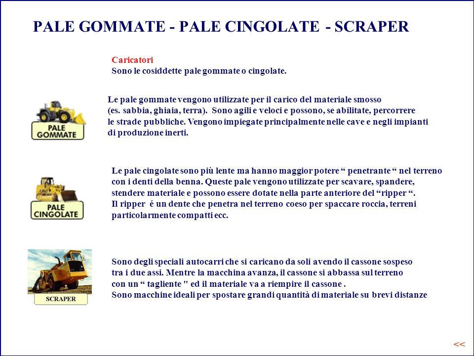 PALE GOMMATE - PALE CINGOLATE - SCRAPER
