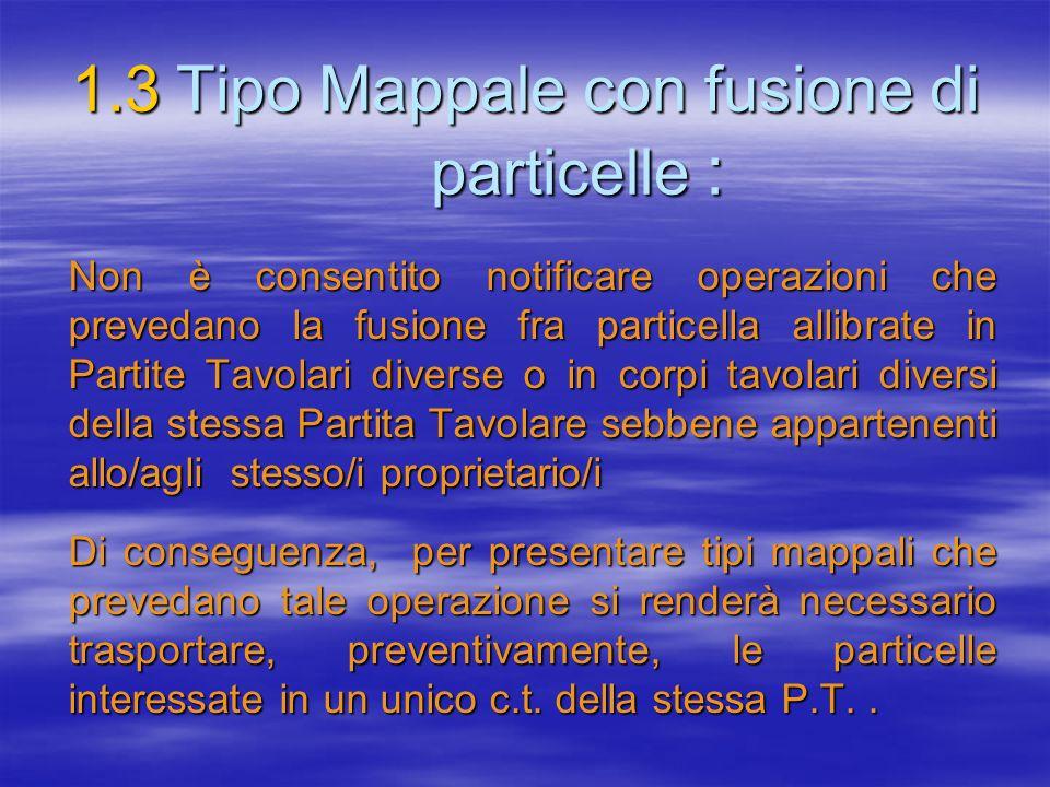 1.3 Tipo Mappale con fusione di particelle :