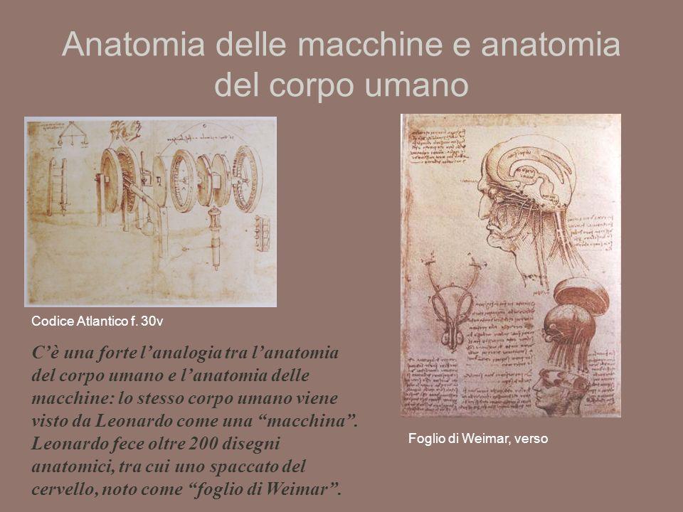 Anatomia delle macchine e anatomia del corpo umano