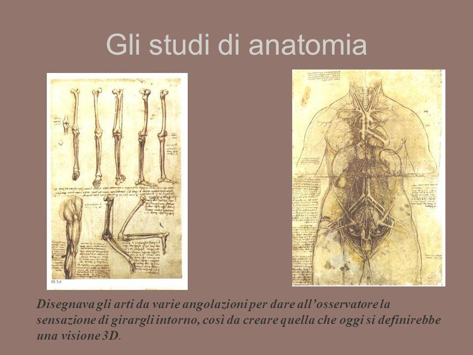 Gli studi di anatomia