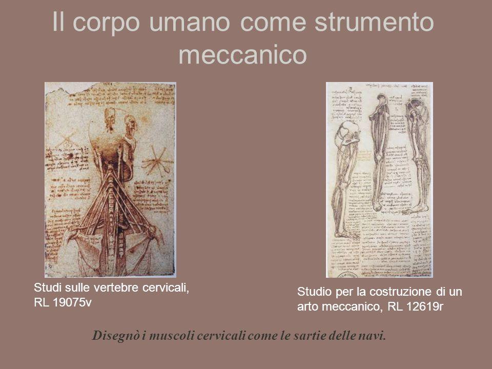 Il corpo umano come strumento meccanico