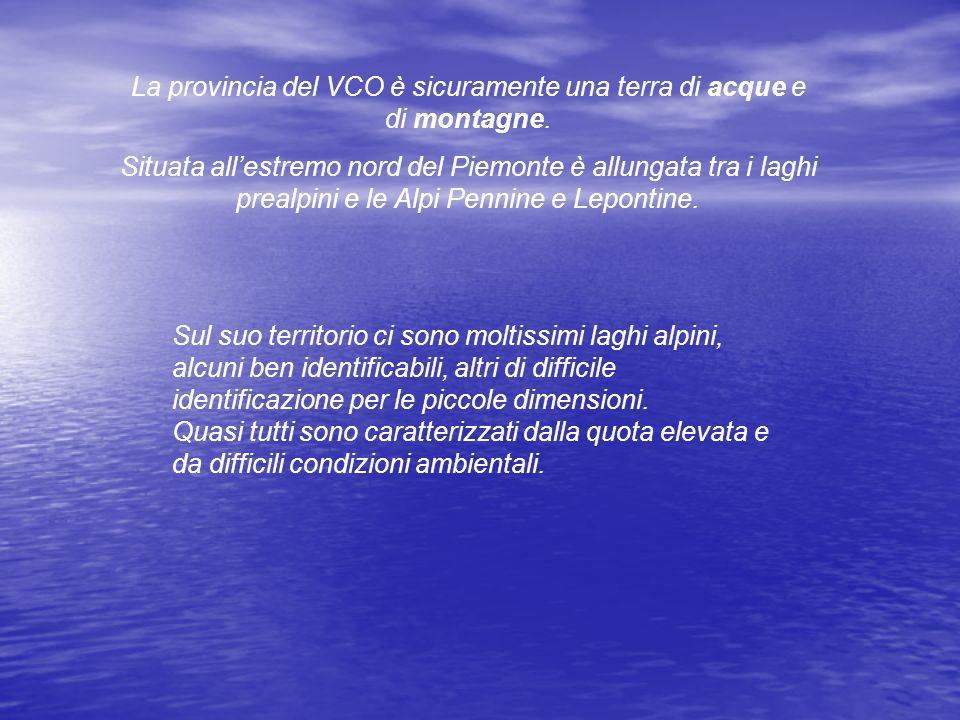 La provincia del VCO è sicuramente una terra di acque e di montagne.