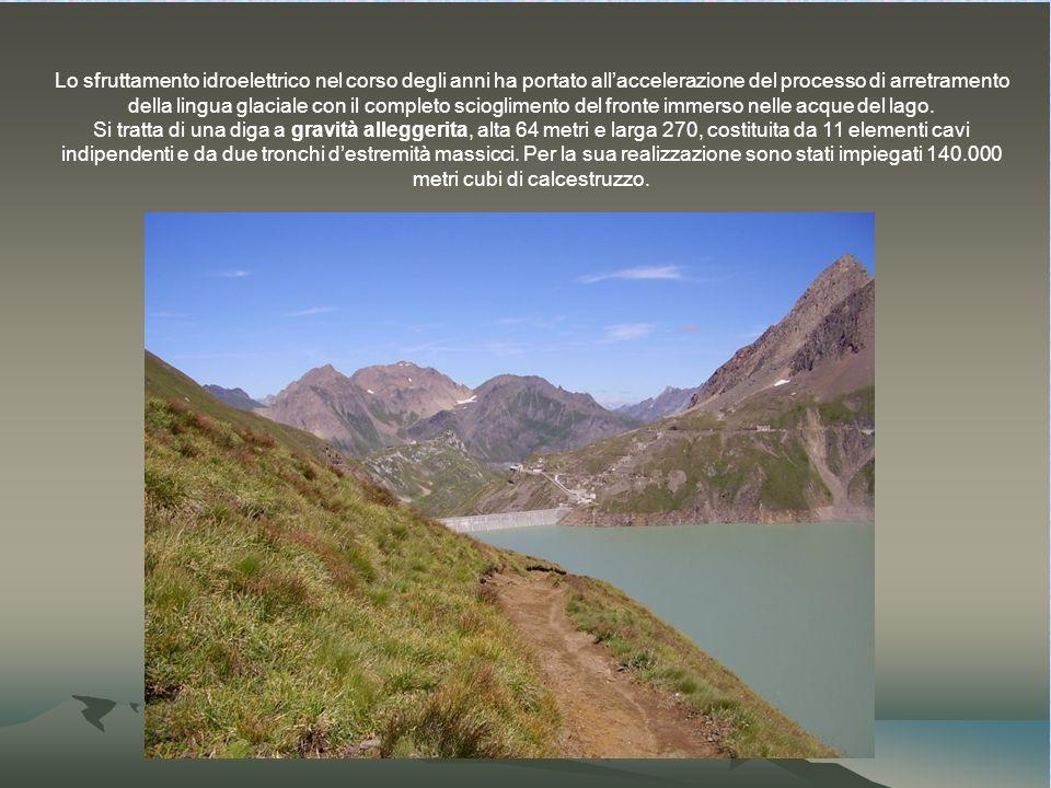 Lo sfruttamento idroelettrico nel corso degli anni ha portato all'accelerazione del processo di arretramento della lingua glaciale con il completo scioglimento del fronte immerso nelle acque del lago.