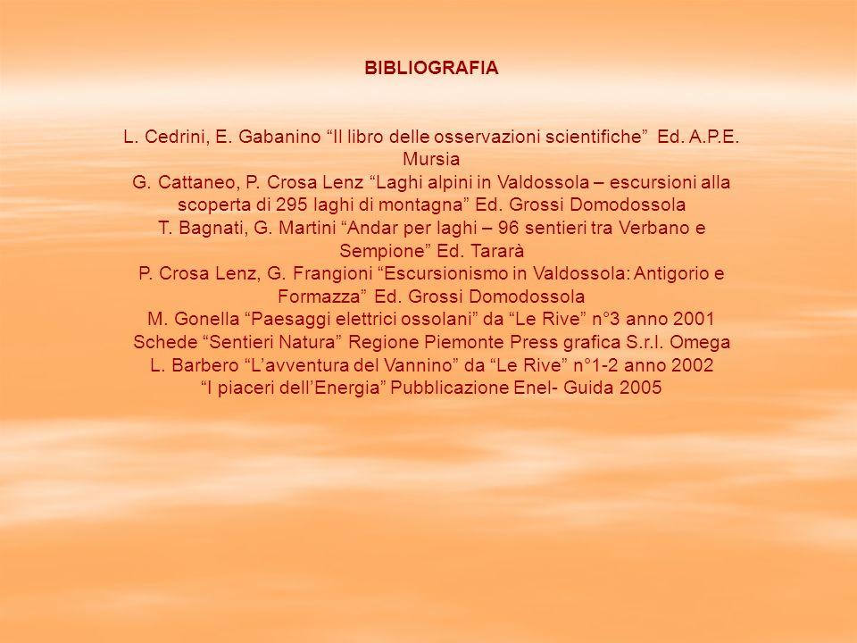 M. Gonella Paesaggi elettrici ossolani da Le Rive n°3 anno 2001