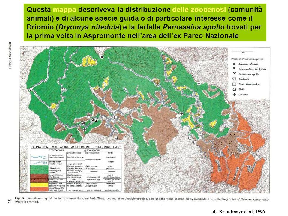 Questa mappa descriveva la distribuzione delle zoocenosi (comunità animali) e di alcune specie guida o di particolare interesse come il Driomio (Dryomys nitedula) e la farfalla Parnassius apollo trovati per la prima volta in Aspromonte nell'area dell'ex Parco Nazionale