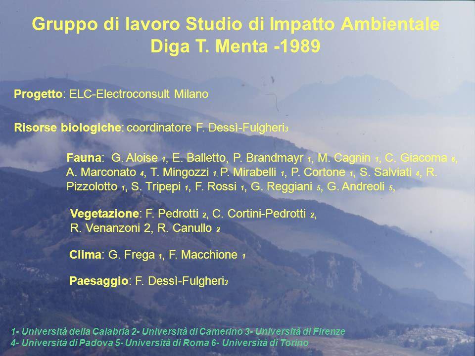 Gruppo di lavoro Studio di Impatto Ambientale Diga T. Menta -1989