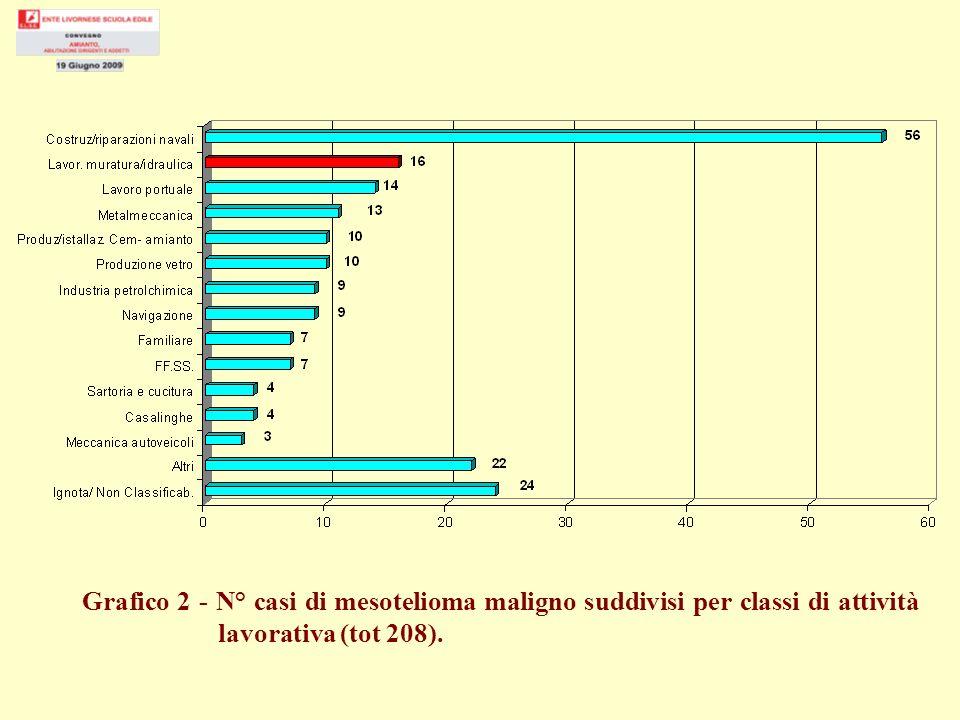 Grafico 2 - N° casi di mesotelioma maligno suddivisi per classi di attività lavorativa (tot 208).