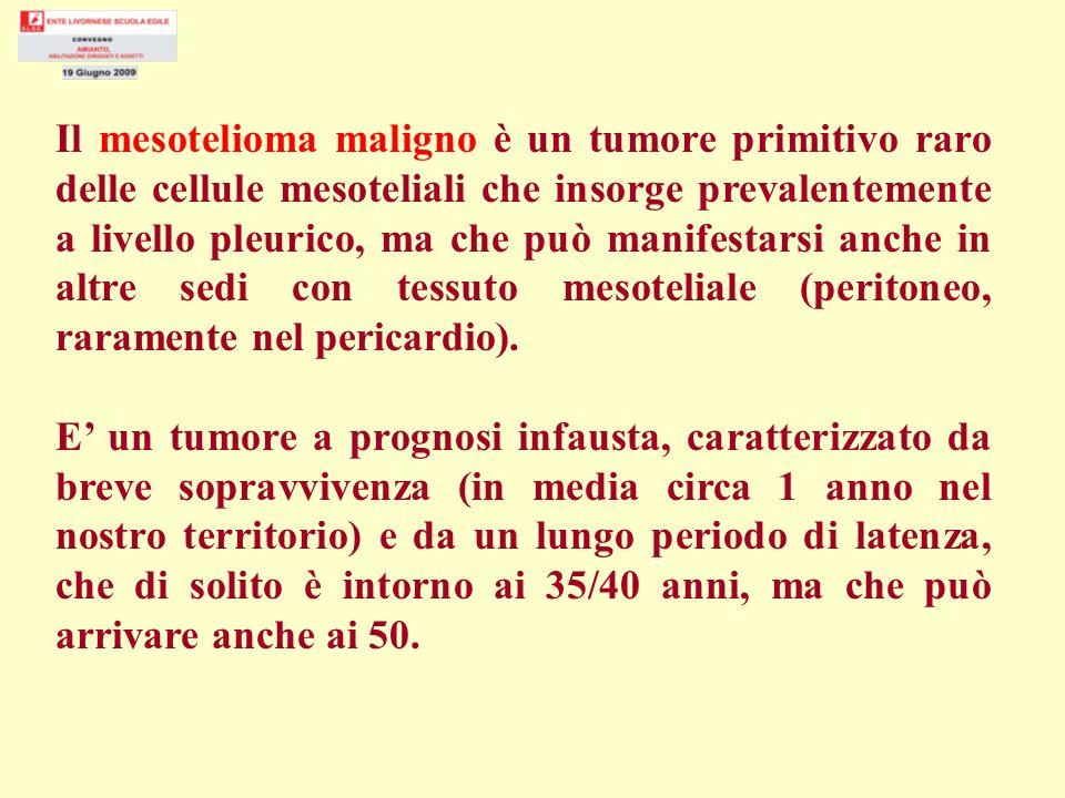 Il mesotelioma maligno è un tumore primitivo raro delle cellule mesoteliali che insorge prevalentemente a livello pleurico, ma che può manifestarsi anche in altre sedi con tessuto mesoteliale (peritoneo, raramente nel pericardio).