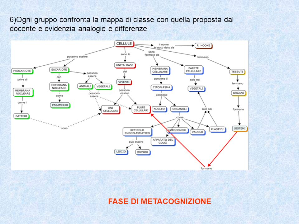 FASE DI METACOGNIZIONE